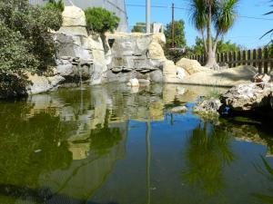 El estanque en el jard n centro de jardiner a espacio verde for Vivero el estanque